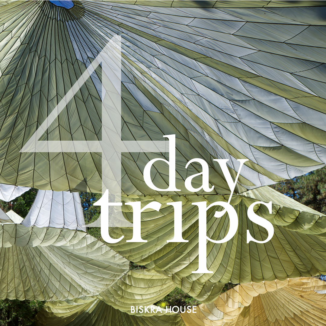 #4 Day Trips