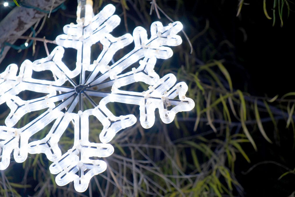Snowflake at Wildlights - Living Desert, Greater Palm Springs Area