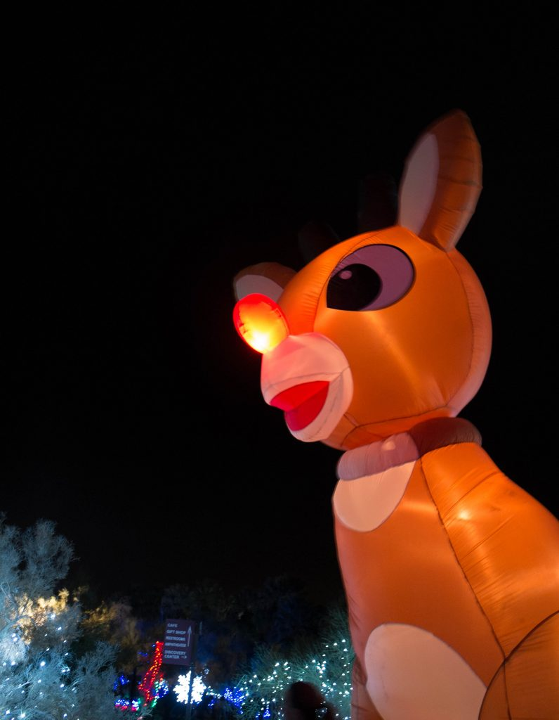 Inflatable Rudolph at Wildlights Palm Desert